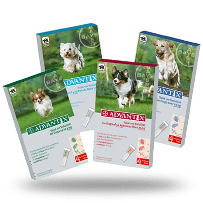 Pipeta Advantix Bayer 4p 4-10kg