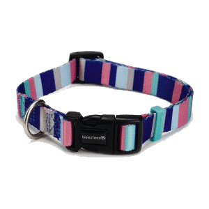 Beeztees New Nylon Collar Rayas